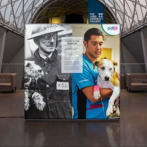 DM75 - Exhibition Close Wall display, 'PDSA on the frontline for 100 years'