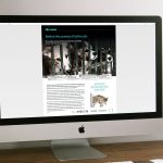 PDSA Companions - Behind the screens of online ads